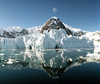 Reflections in Paradise Harbour, Antarctica